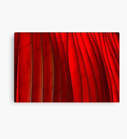 Red Folds Canvas Print