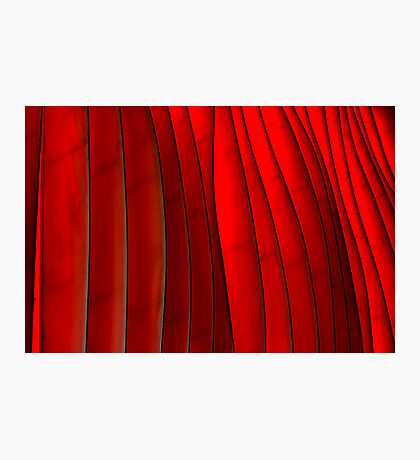 Red Folds Photographic Print