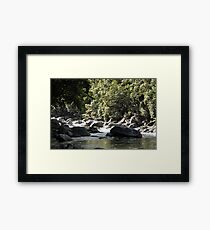 MCC Mossman Gorge Framed Print