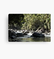 MCC Mossman Gorge Canvas Print