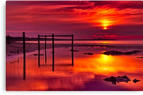 """Red Morning At Fisherman's Beach"" by Phil Thomson IPA"