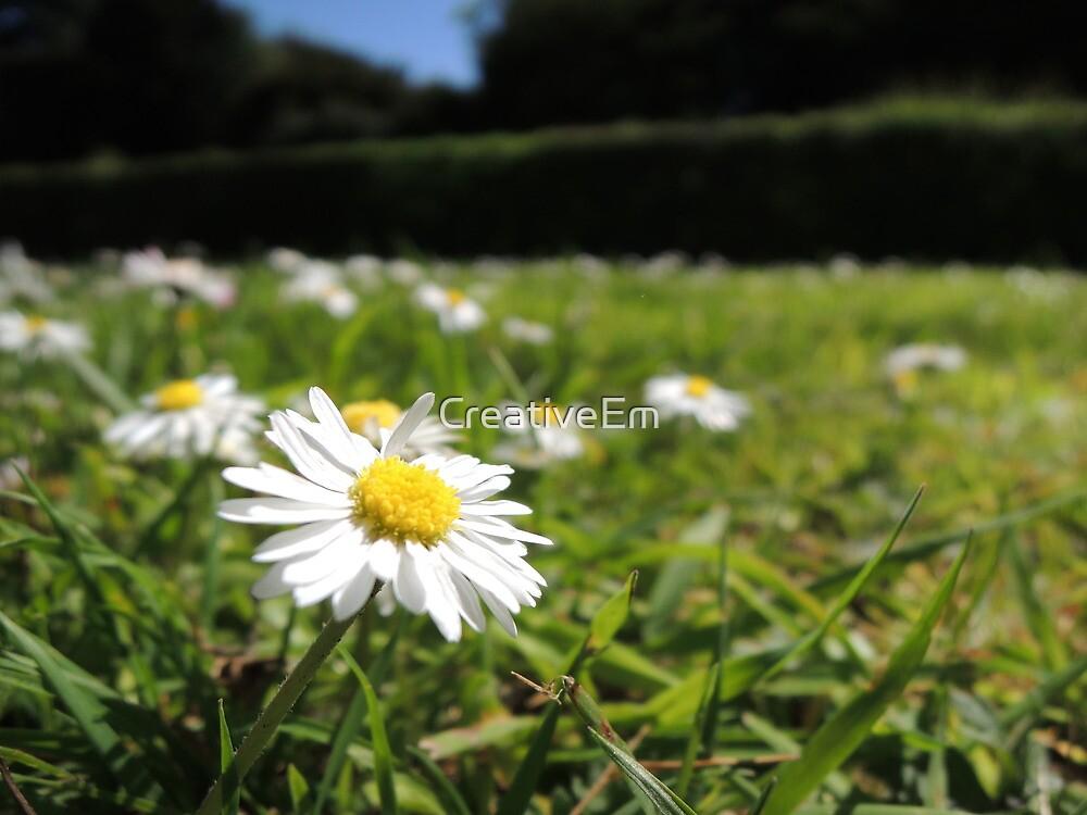 One in a million - Daisy by CreativeEm