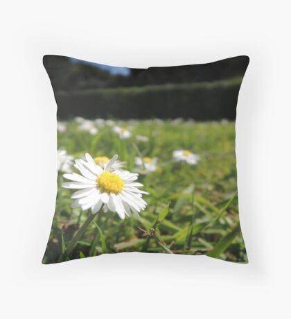One in a million - Daisy Throw Pillow