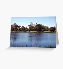 Swan On Lake Claremont Greeting Card