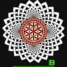 CELTIC FLOWER OF LIFE VORTEX MERCH OCT 2012 by David Avatara