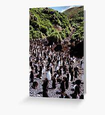 Royal Penguin Highway Greeting Card