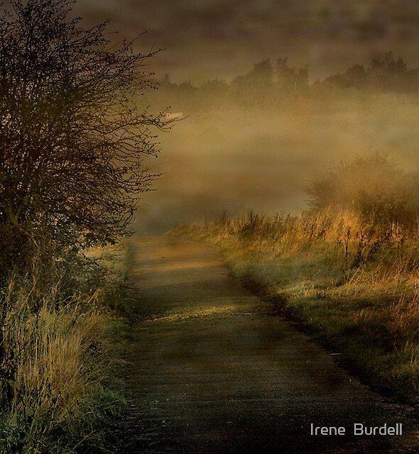 Morning Mist  in Lancashire  by Irene  Burdell