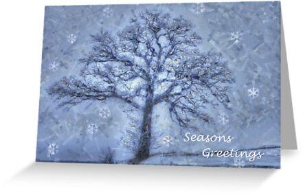Seasons Greetings by wiscbackroadz