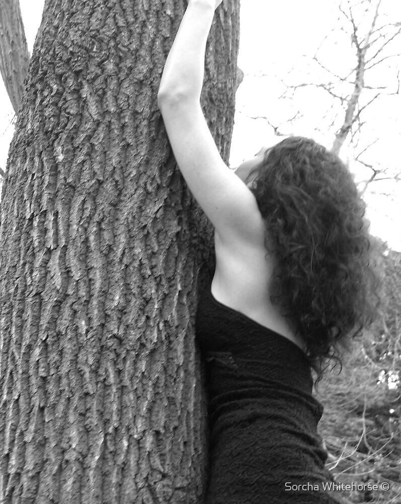 Climb by Sorcha Whitehorse ©