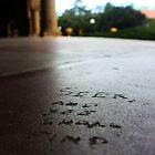 """Seek and you shall find"". Stanford University Campus by Igor Pozdnyakov"