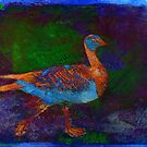 """Duck 2 (from """"Ducks"""" collection) by EvaMarIza"""