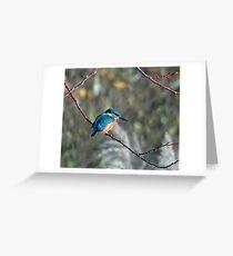 Common Kingfisher Greeting Card