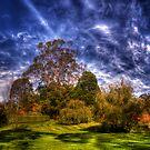 Bisley Gardens II - Mt Wilson NSW Australia - Panaroma  by Brad Woodman