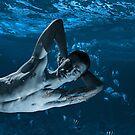 Merman Dreams 2 by Michael Taggart