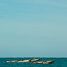 Fishing boats in Zanzibar by akwel