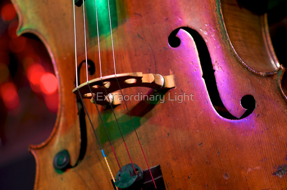 """""""Without music, life would be a mistake."""" by Renee Hubbard Fine Art Photography"""