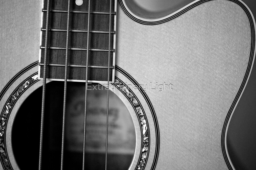 """""""Some people have lives, some people have music."""" by Renee Hubbard Fine Art Photography"""