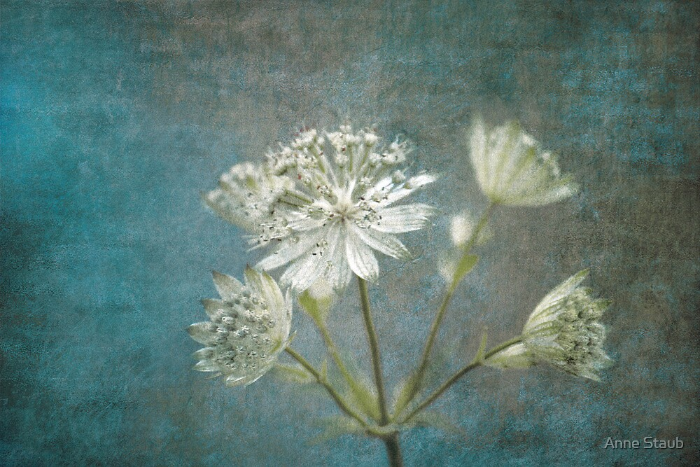 Angelic by Anne Staub