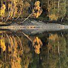 Loch Meig Reflection by kernuak