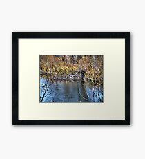 Home on the Creek Framed Print