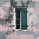 New Orleans Windows and Doors VIII by Igor Shrayer