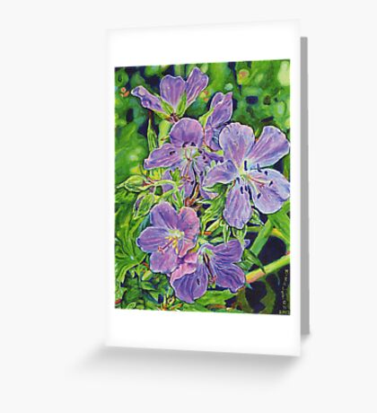5 Wild Geraniums Greeting Card