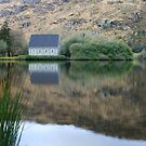Finbarr's Reflection by CliveOnBeara