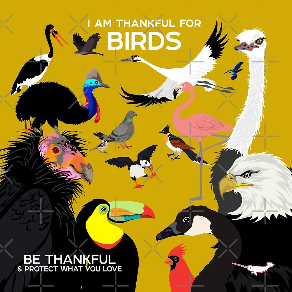 I Am Thankful For Birds by PepomintNarwhal