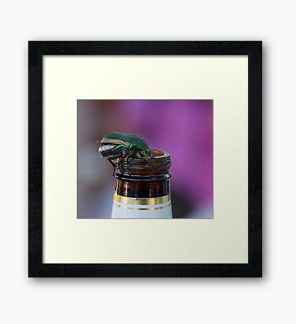 Beer Bottle Beetle Framed Print