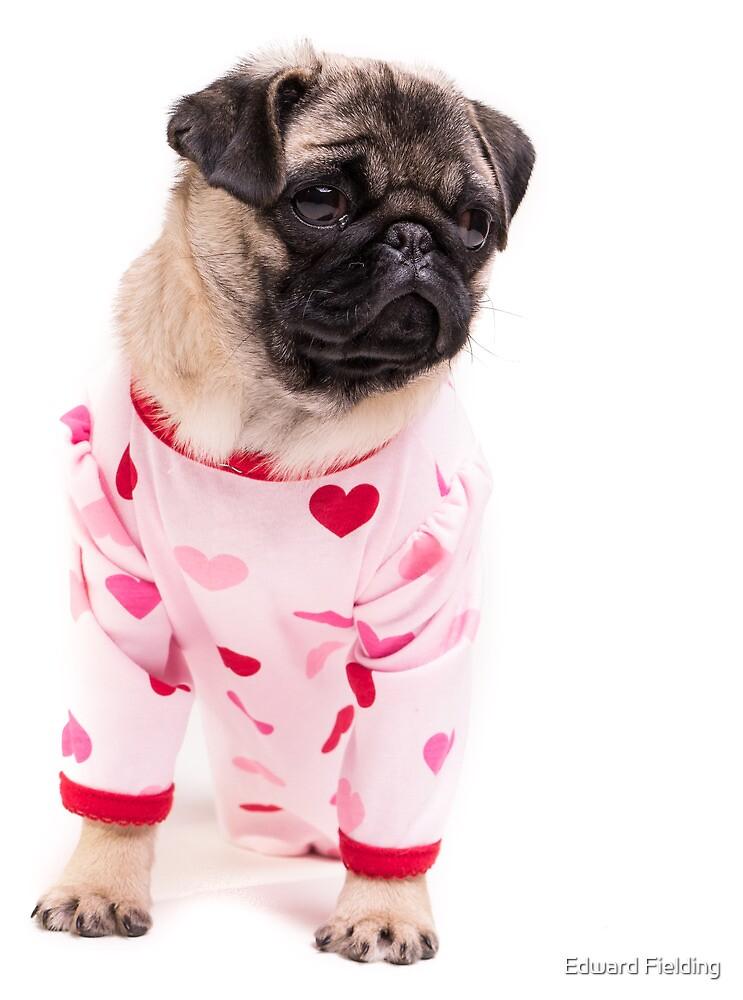 Pajama Party by Edward Fielding