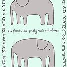Elephants are pretty much Palindromes by scruffian