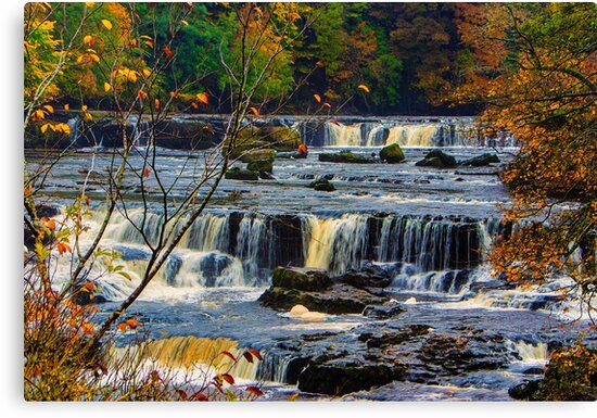Aysgarth Falls by Trevor Kersley