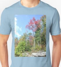 Pretty Rustic Appalachia Scene Rock & Trees T-Shirt
