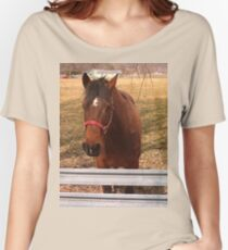 Pretty Brown Horse by a Fence in West Virginia Women's Relaxed Fit T-Shirt