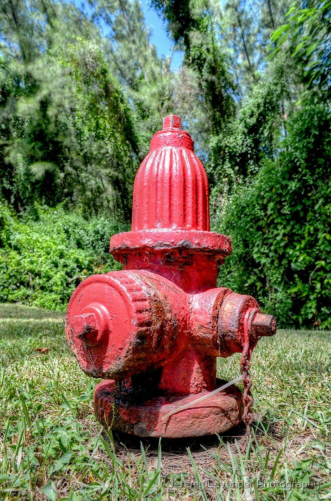 Fire Hydrant in Paradise Island, The Bahamas by Jeremy Lavender Photography