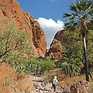 Walk to Echidna Chasm walk, Purnululu National Park, Western Australia by Margaret  Hyde