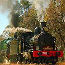 Steaming through the countryside by Michael Matthews