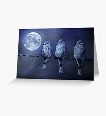 Moonlight Roost Greeting Card