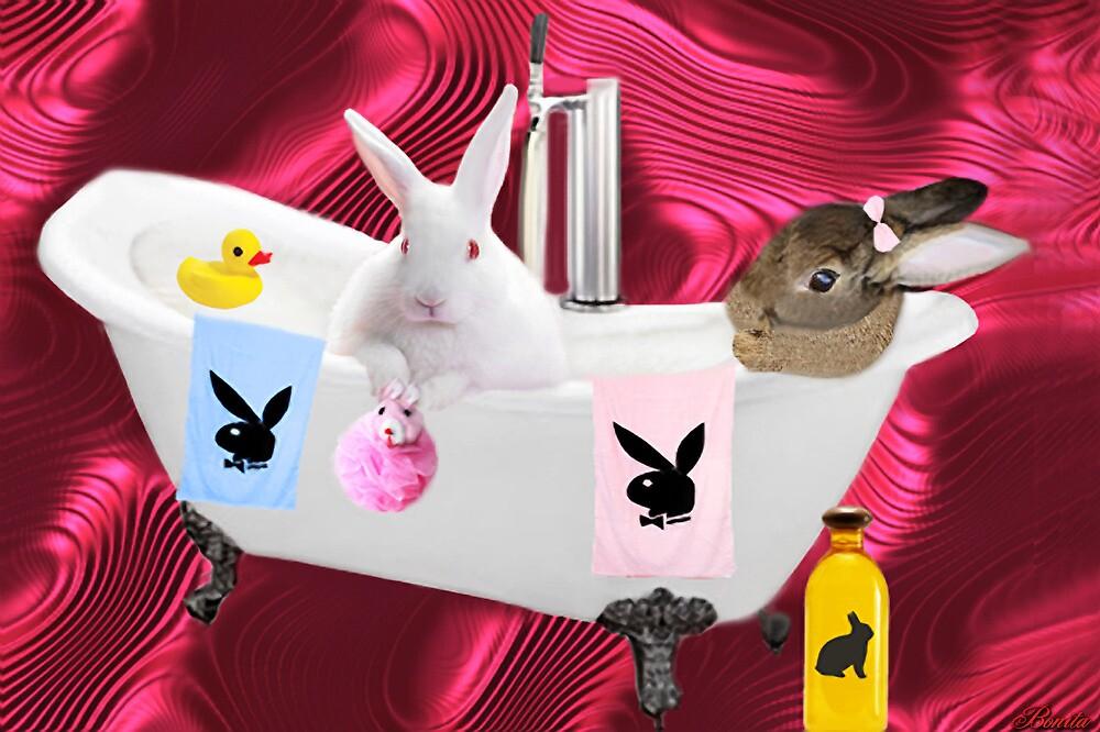 (\ /) THUMPERS CAN U PASS ME MY BATH SPONGE U SEXY EARS (\ /) by ✿✿ Bonita ✿✿ ђєℓℓσ