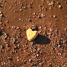 Love by Kuzeytac