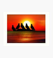 Birds at Sunset point Art Print