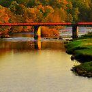 Autumn Day along the River Tees: Barforth Bridge, Gainford by Ian Alex Blease