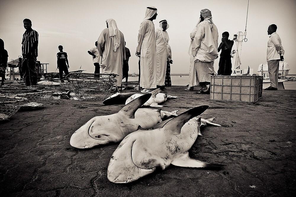 Shark Attacked by Vincent Riedweg