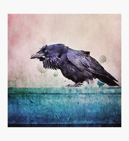 Words of a Raven Photographic Print
