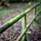 2012 - fence by Ursa Vogel