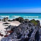 Marley Beach Bermuda.. by buddybetsy
