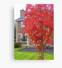 Autumn In Suburbia Canvas Print