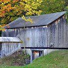 Autumn Barn by Gayle Dolinger
