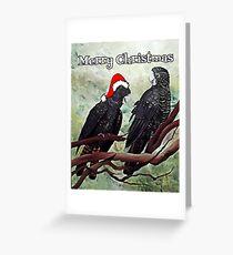 'COCKY CHRISTMAS' Greeting Card