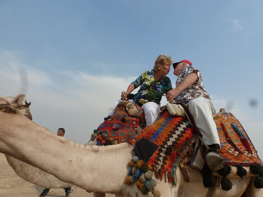 Love on a Camel by Randy Sprout